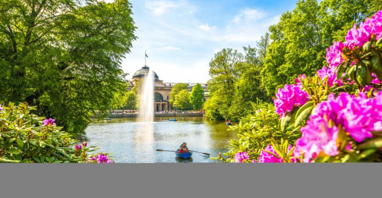 Castles on the Rhine river+Wiesbaden+Frankfurt